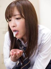 Sakura Miyuki